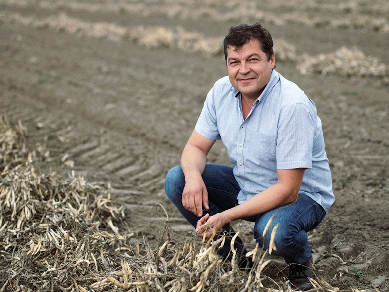 Beitrag_Biozyklische-vegane-Landwirtschaft_800x600px